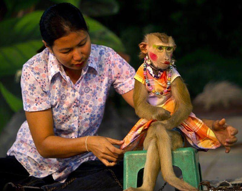 горящие туры в таиланд из казани