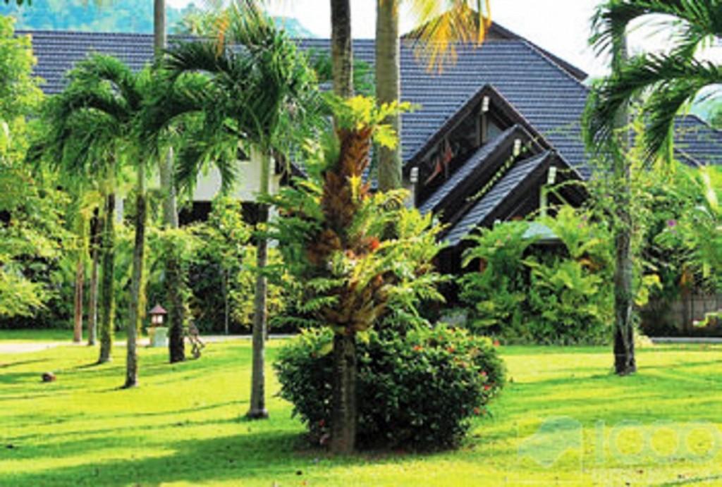 Duangjitt Resort2