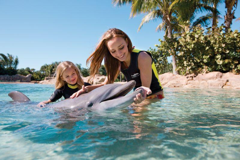 доминикана экскурсия в Dolphin Explorer Park в подарок